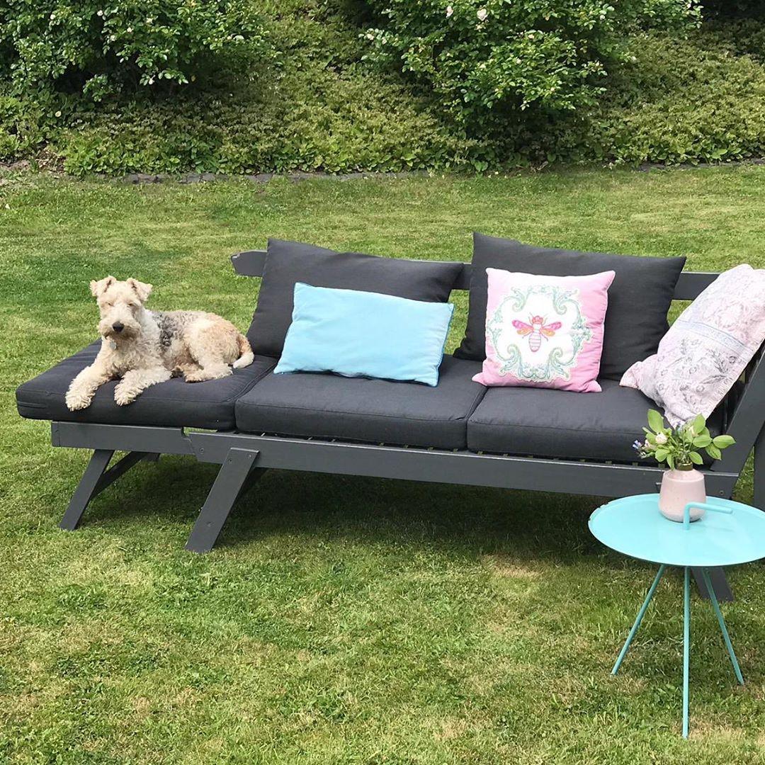 Wieso auf dem Boden liegen ? #verwöhnt #bruninimmteinsonnenbad #foxterrier #foxterrierlovers #foxi #foxterriersofinstagram #garden #gartenliebe #gartenzeit #familydog #princess #dogsbestfriend #dogsofinstagram